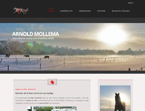 Arnold Mollema website