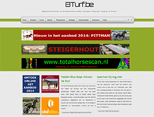 bTurf website link